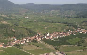 Le village de Nothalten au coeur du vignoble alsacien