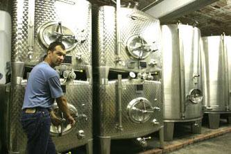 Stockage du vin en cuves inox ...